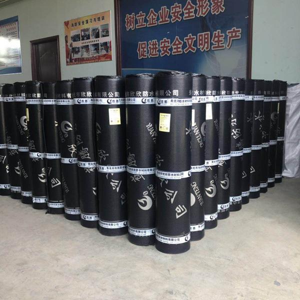 弹性体(SBS)防水卷材