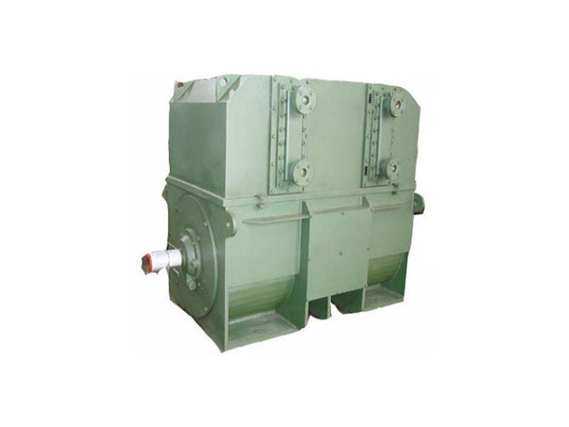 高压三相异步电动机