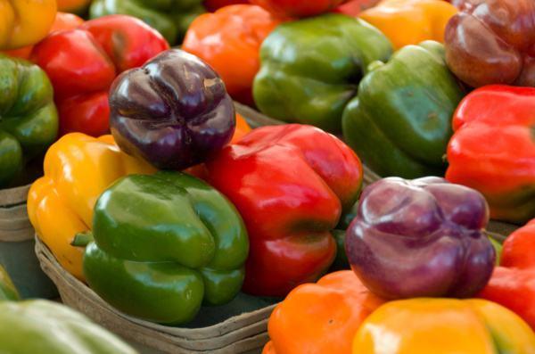 五彩椒种子