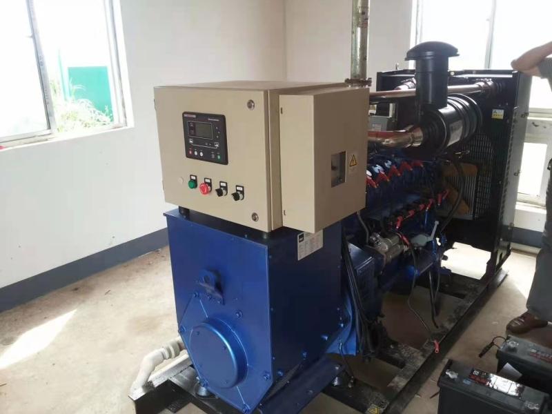 生物质气发电机
